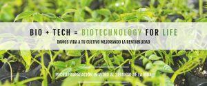 Formula Meristec, la formula de plantacion clonal, para cultivos in-vitro