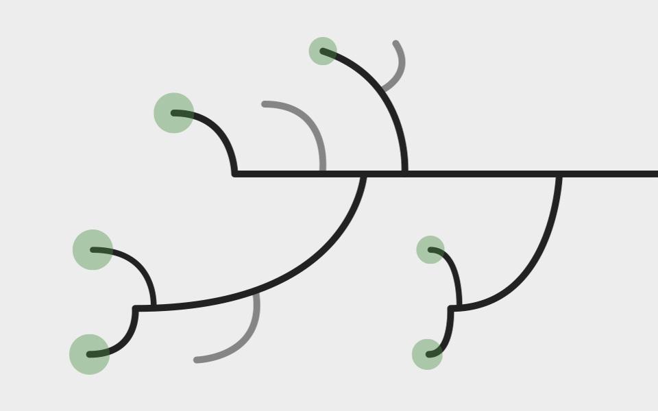 variedades-de-fructificacion-lateral