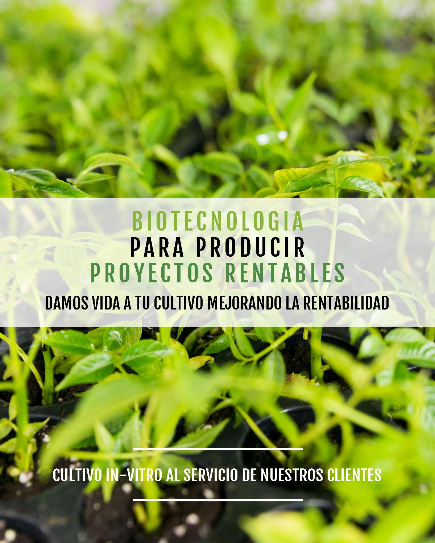 formula-meristec-lideres-cultivos-invitros-2-responsive